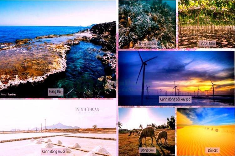 Tiện ích dự ánSunBay Park Hotel & Resort Ninh Thuận